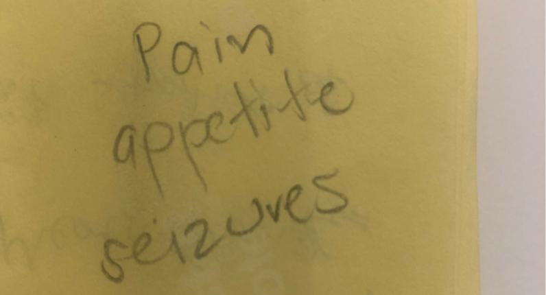 Pain appetite seizures