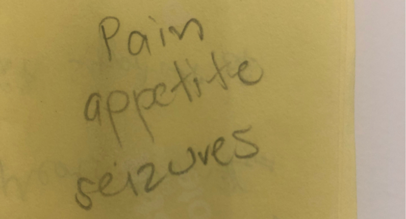 Read more about the article Pain appetite seizures